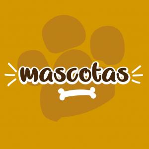 mascotas-11